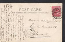 Family History Genealogy Postcard - Vogel - Bruxelles - Belgium RF116