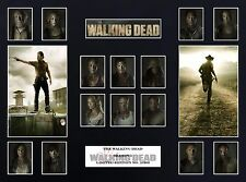 The Walking Dead Season 3  (16 x 12) Display