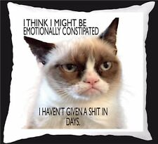 GRUMPY CAT I THINK I MIGHT BE EMOTIONALLY CONSTIPATED cushion gift  present 205