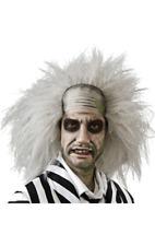 Adult Official BEETLEJUICE WIG Halloween Scary Horror Grey Beetle Juice Science