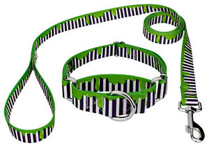 Country Brook Petz® Green Slime Martingale Dog Collar and Leash