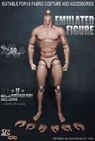 "USA 12"" ZC Toys Male Action Figure Muscular Body For 1/6 Scale HT Man Head Model"