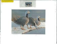 ALASKA #1 1985  STATE DUCK STAMP PRINT EMPEROR GEESE Daniel Smith  List $400
