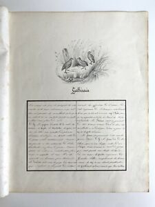 Antique Pencil Drawing & Handwritten Essay On Game Birds In French, Circa 1830