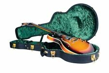 Semi-Hollow 335 Style Electric Guitar hard case by Guardian hollowbody, hardcase