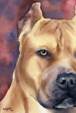 Pit Bull Terrier Dog Watercolor 8 x 10 Art Print by Artist Dj Rogers w/Coa