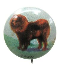 1930's CHOW Dog tin litho pinback button