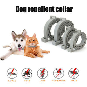 Adjustable Dog / Cat Collar Flea Tick Prevention Collar Natural Pests Control