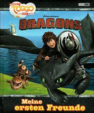 Dragons: Meine ersten Freunde, Panini, Freundebuch, Drachenzähmen, NEU
