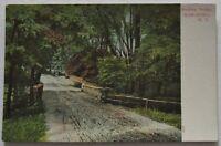Marlboro Buckley Bridge New York Postcard Antique (d431)