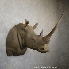#19346 E | African Rhinoceros Replica Taxidermy Mount For Sale