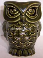 Bath & Body Works Fragrance Oil Wax Melt Tart Warmer Ceramic Green Owl