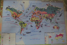 Map Expo School Poster set table Planisphere, animals continent world map