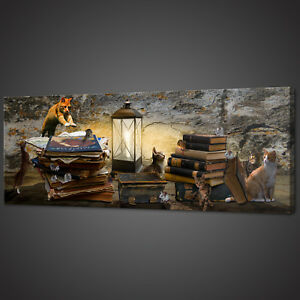 CATS AND BOOKS PANORAMIC CANVAS PRINT PICTURE WALL ART VARIETY OF SIZES