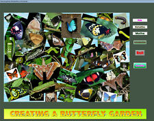 Creating a Butterfly Garden - Download and install program.