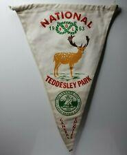 "British camping club National Feast of Lanterns 1963 teddesley park pennant 12"""