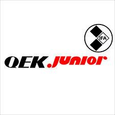 1 QEK Junior 28cm Wohnwagen IFA mobile DDR IFA Aufkleber Oldtimer Autoaufkleber
