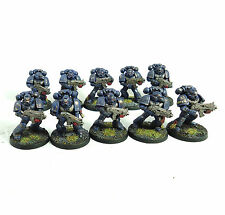 WARHAMMER 40K ARMY SPACE MARINE CRIMSON FIST 10 MAN TACTICAL SQUAD  PAINTED