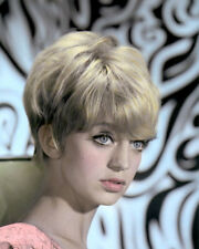 "GOLDIE HAWN HOLLYWOOD ACTRESS, DIRECTOR, PRODUCER 8x10"" HAND COLOR TINTED PHOTO"