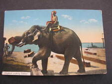 Elephant working Timber Postcard