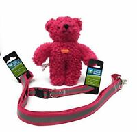 Guardian Gear Pink Reflective Dog Collar & Leash Set, w/FREE Zanies Teddy Bear T