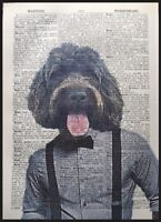 Chocolate Brown Cockapoo Print Vintage Dictionary Page Picture Dog Cockerpoo