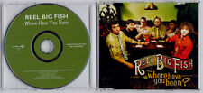 REEL BIG FISH Where Have You Been? 2002 UK 1-track promo CD + press release