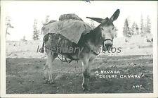 Gold Mining Utah 1939 Original News Service Photo