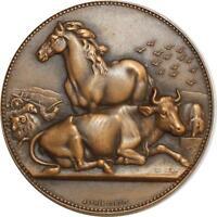 O6369 Médaille Horse Bœuf Cheval Sénateur Dubois SUP