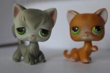 Littlest Pet Shop Grey Angora Cat #20/ Orange Striped Tabby #11 In Vg Condition