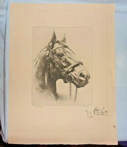 Man O' War Race Horse Drypoint Etching Reproduction  RH Palenske