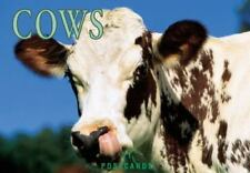 Postcard-Cows by BrownTrout Staff (1996, Paperback)