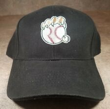 Gary SouthShore RailCats Embroidered Baseball Cap Hat NEW Adjustable
