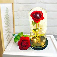 Creative Gift Forever Rose Flower Festive Preserved Immortal Fresh Rose in Glass