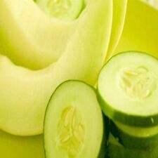Cucumber Melon Fragrance Oil Candle/Soap Making Supplies *Free Shipping*