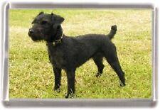 Patterdale Terrier  Fridge Magnet No 6 by Starprint