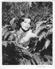 ELISABETH MULLER original posed MGM 1956 still photo THE POWER AND THE PRIZE