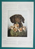 HAPPY DOG FAMILY - COLOR Victorian Era Illustration