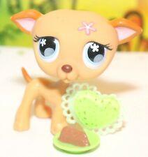 ��Authentic Littlest Pet Shop Lps #498 Flower Greyhound Whippet Puppy Dog��