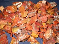 Top Quality Arizona Rainbow Petrified Wood Lot Rough. 3 lb lot BIN 136