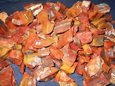 Arizona Rainbow Petrified Wood Natural Rough Tumbling/Collect/Aquiarium 3LB  LOT