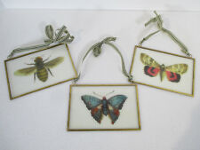 Bug Prints Pictures Glass Vintage Butterfly Moth Bee Set of 3 Ribbon Hangers