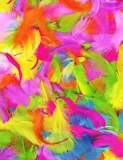 Bright Multicolour Feather Art Craft Easter Scrapbook Card Collage Hat Millinery