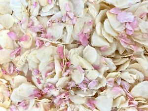 Pink Delphinium Ivory Dried Biodegradable Wedding Confetti. Real Flower Petals