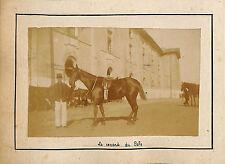 "LIBOURNE ? PHOTO 15° RGT DRAGONS LE CHEVAL ""CANARD "" DU COLONEL VERS 1890 / 1900"