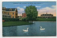 Manzanita Lake Swans University Nevada Reno NV Linen postcard