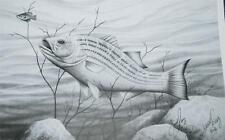 Signed Numbered Lithograph Jesse Ray Freshwater Fish Bass Pencil Sketch 2004 ~Fd