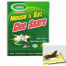 Max Sticky Glue Mice Traps Board Mouse Rat Bugs Safe Trapper Rodent Rat Bugs New