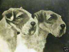 Bert Cobb Sealyham Terriers 1931 Dog Art Print Matted