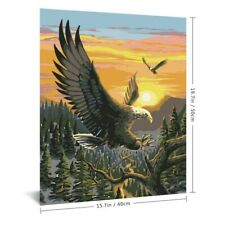 Eagle Animal Painting By Numbers Oil Paints Kits Drawing On Canvas Wall Pictures